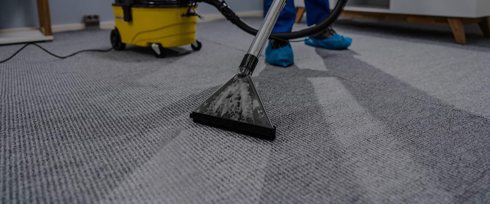 Expert Carpet Cleaning Mulgrave