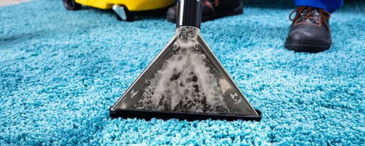 Expert Rug Cleaning Mulgrave